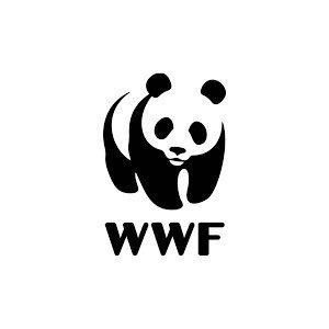 Worldwide Fund for Nature   David Key