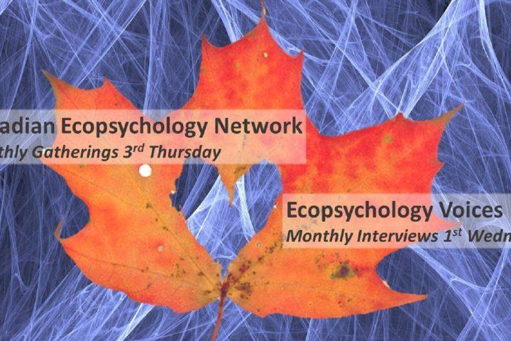 VIDEO: Ecopsychology for Social Change | David Key