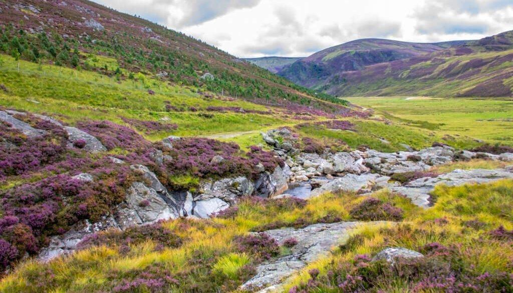 Cairngorm Mountain 1